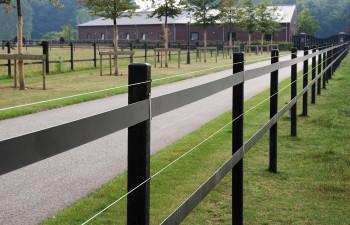 Beo-Band  8 cm breit, schwarz